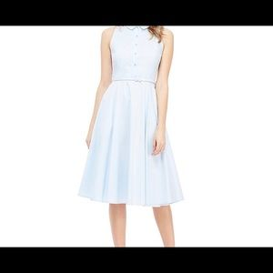 Gal Meets Glam Collared Button Front Belted Dress